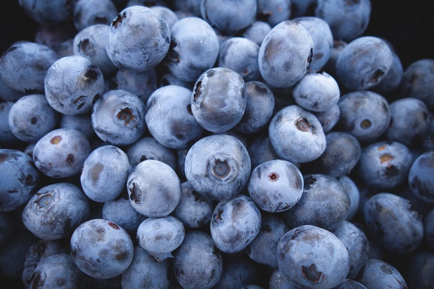 Blueberry picking is popular activity in August.
