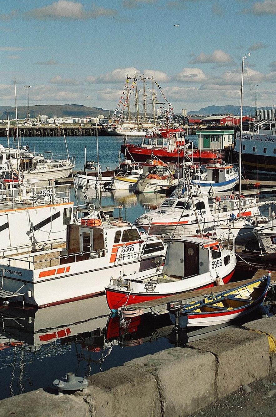 Reykjavik's harbour is a popular hang-out spot.
