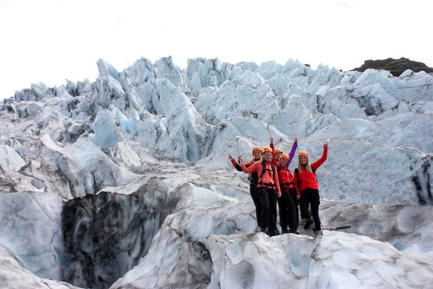 Guide to Iceland's locals hanging out on a glacier.