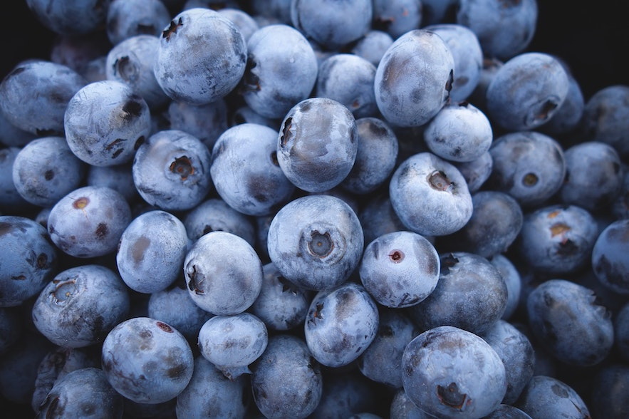 Berries are one of the few edible plants in Iceland.