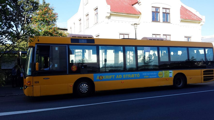 Reykjavik City Buses are regular and reliable.