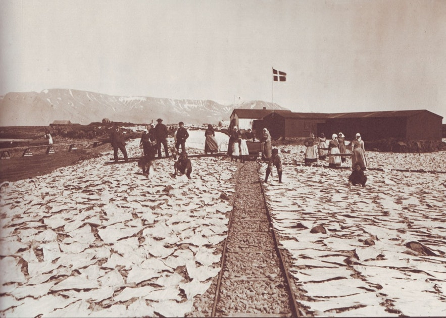 Salted cod in Iceland historically.
