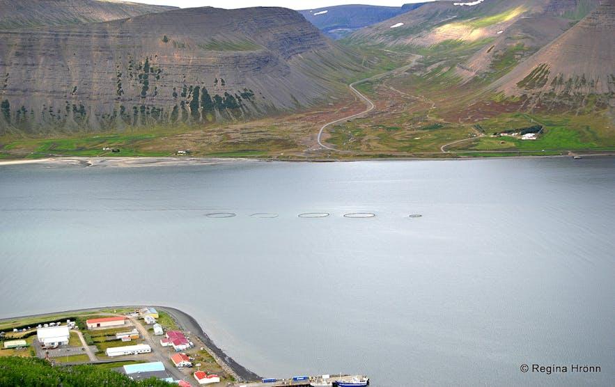 The view of parts of Þingeyri village,Dýrafjörður fjord and Gemlufellsheiði heath