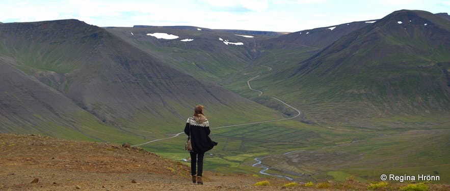 The view from Mt. Sandafell Westfjords