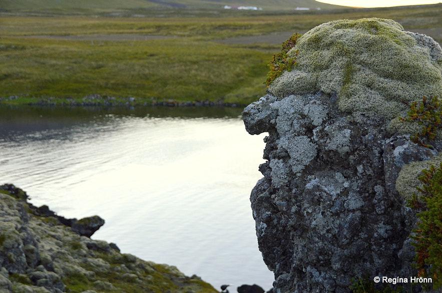 Lava troll in Berserkjahraun lava field Snæfellsnes