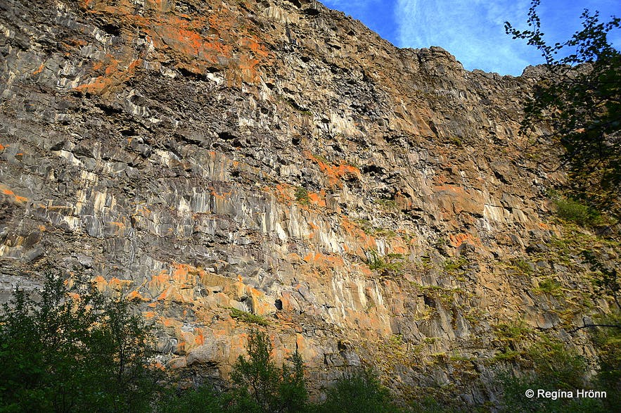 The walls of Ásbyrgi NE-Iceland