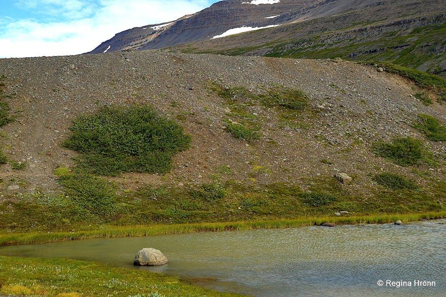 Glacial drift from Drangajökull glacier Westfjords
