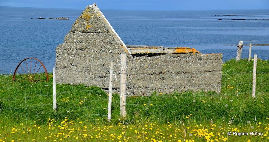 At Suður-Bár farm in Grundarfjörður Snæfellsnes