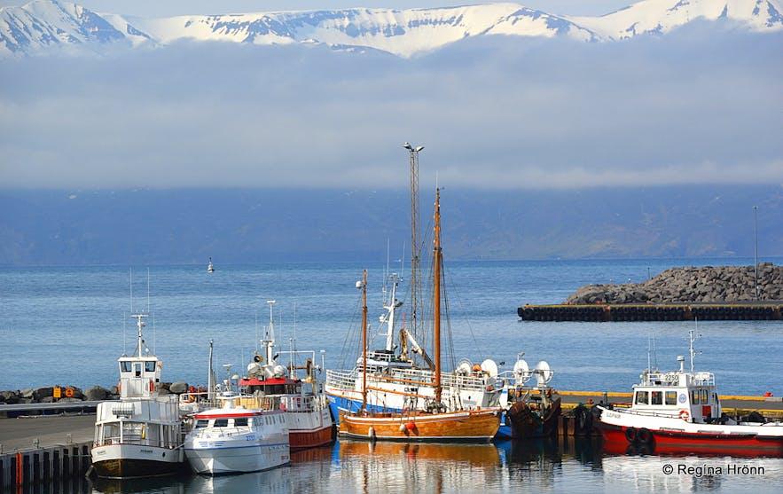 Húsavík harbour and Skjálfandaflói bay