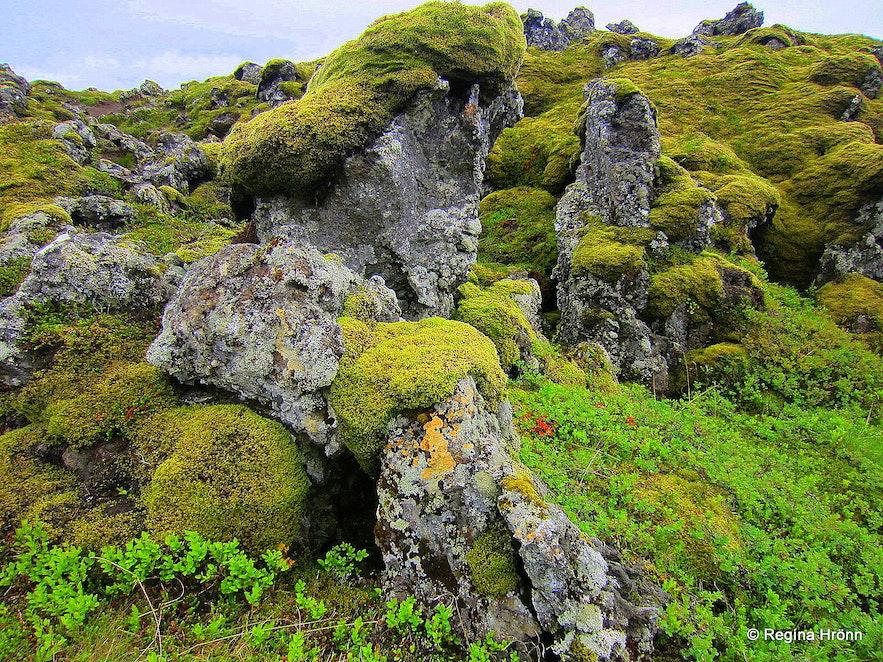 Lava field by Rauðamelsölkelda