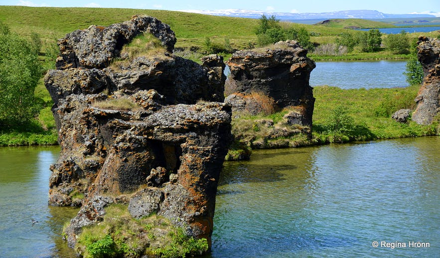 The Mývatn area - Kálfastrandavagur