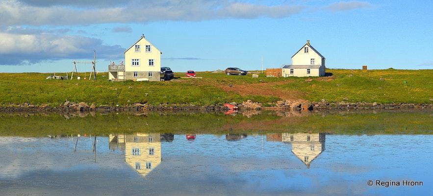 Melrakkaslétta NE-Iceland