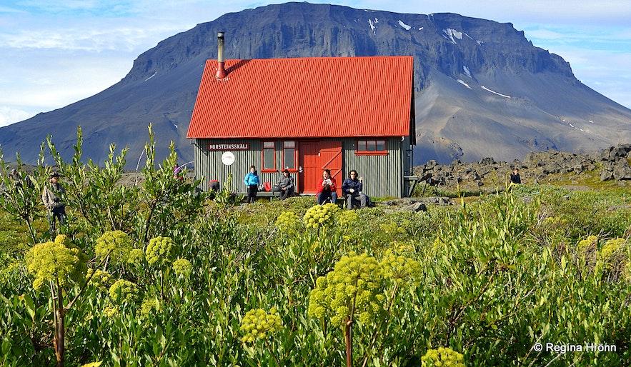 Herðubreiðalindir oasis and Mt. Herðubreið