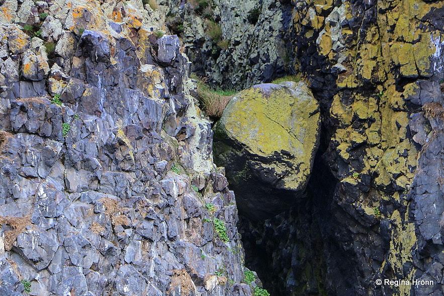 Hvítabjarnareyja island Breiðafjörður