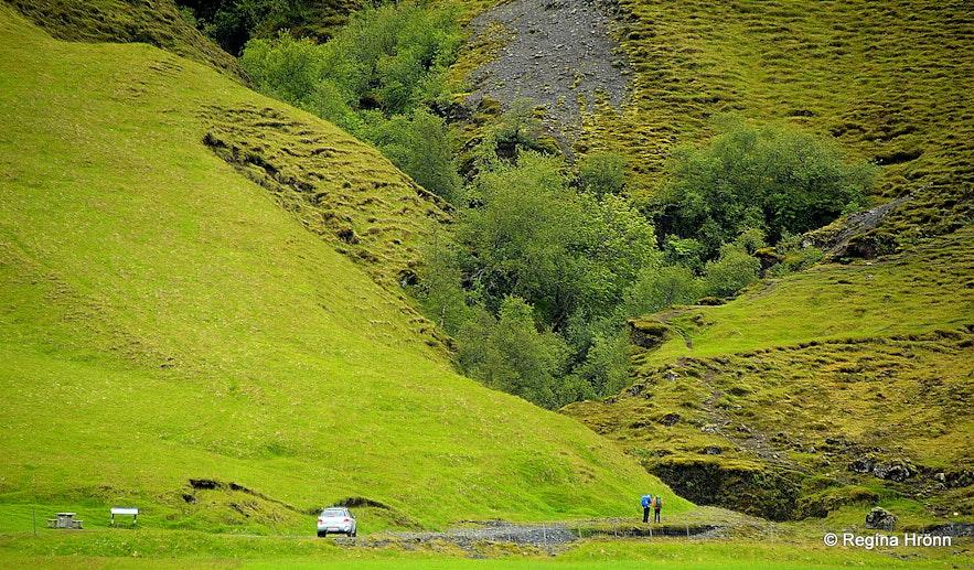 Nauthúsagil canyon South-Iceland