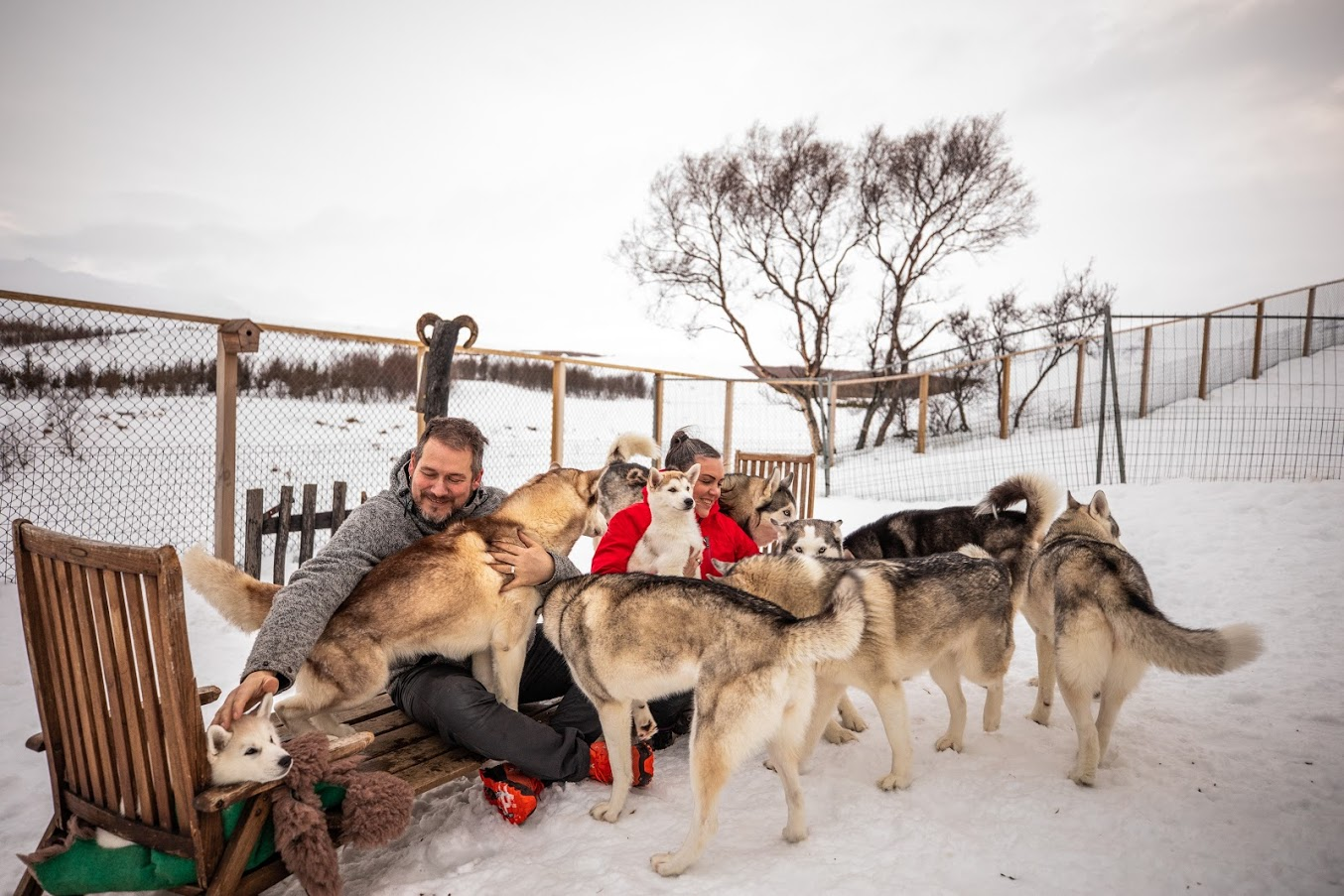 Huskies with their owners in North Iceland during winter.