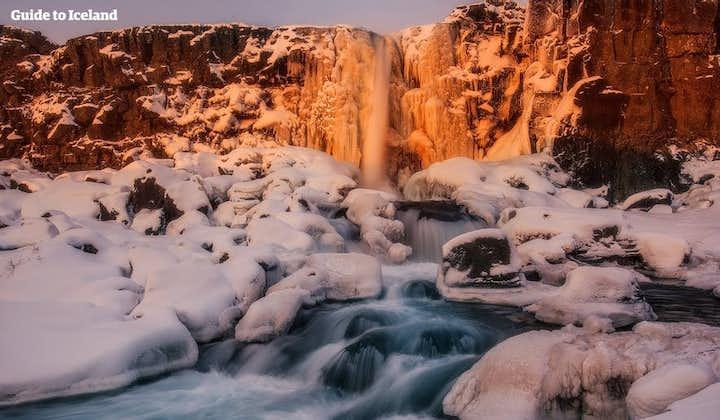 Thingvellir becomes a snowy wonderland in winter.