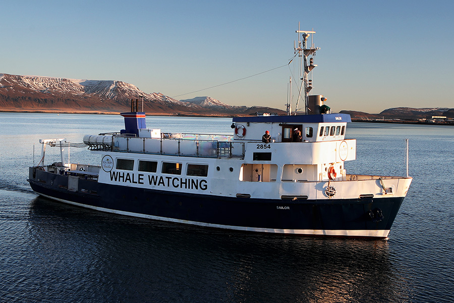 A whale watching vessel departs Reykjavik.